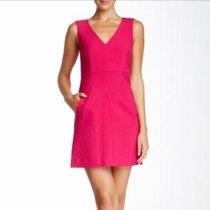 NWT Dian Von Furstenburg A-Line Rose Dress